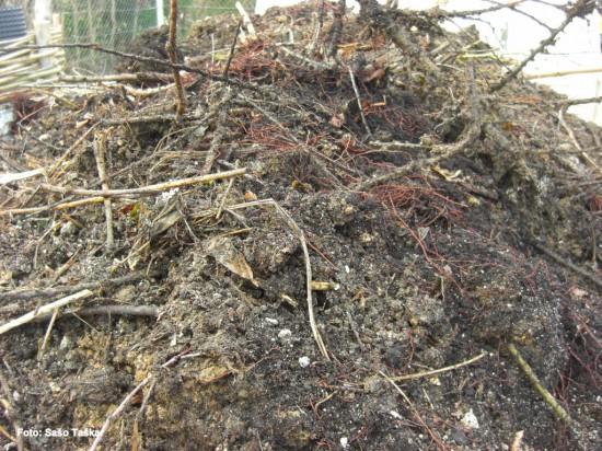 Surovi kompost druga plastSurovi kompost druga plast